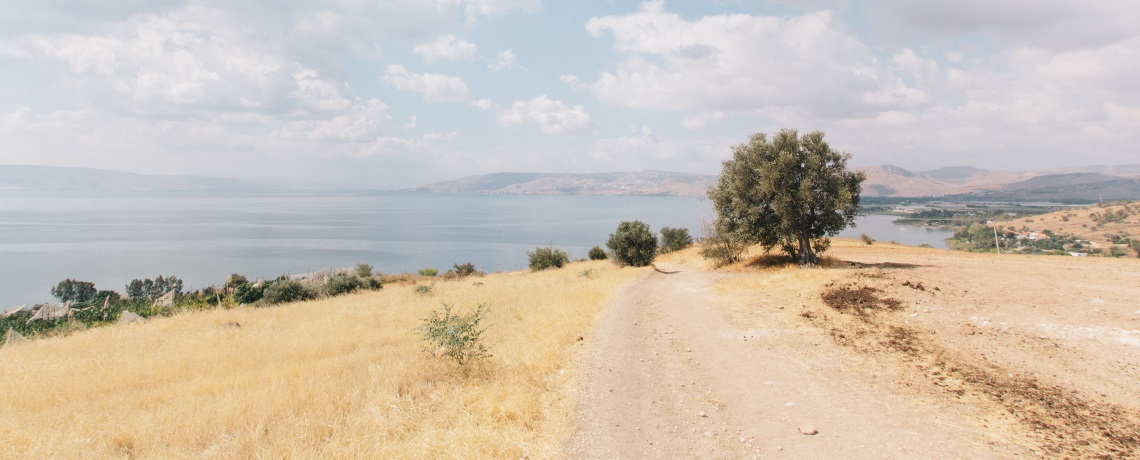 What principles underpin the Beatitudes from Jesus' Sermon on the Mount?