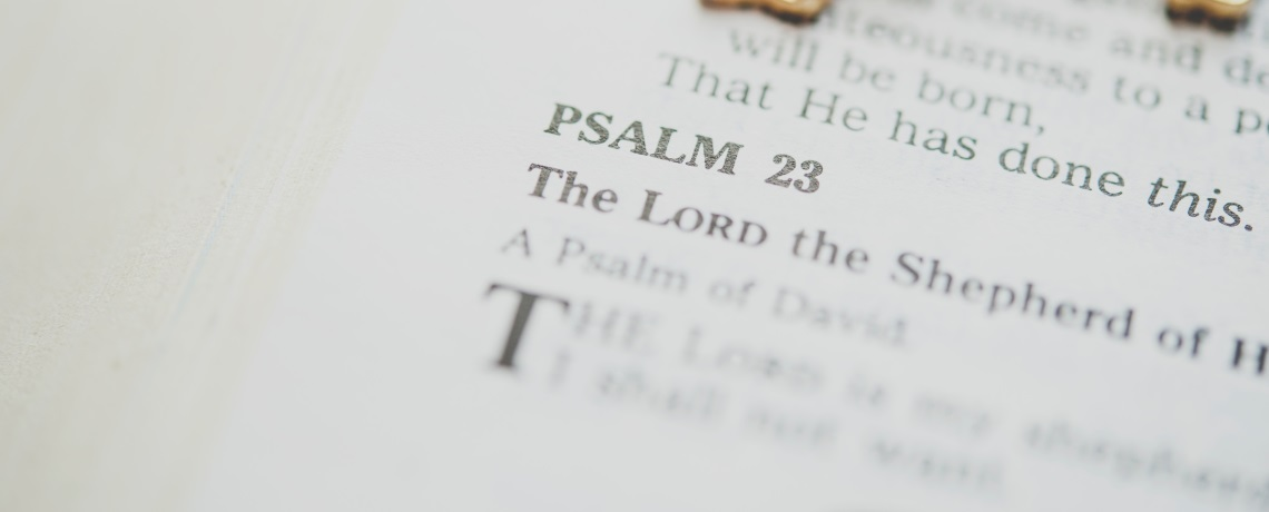 If the Lord is not our Shepherd, we will want (Psalm 23)